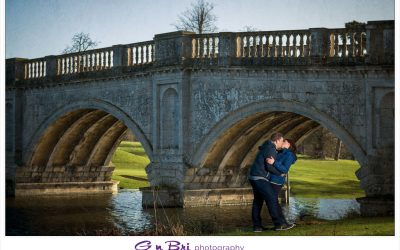 Hertfordshire Brocket Hall Pre-wedding | Sharna & John-Paul | Sneak Peek